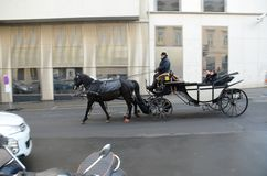 Horse carrige, Vienna Royalty Free Stock Photography