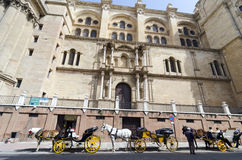 Horse cars, Malaga. MALAGA, SPAIN - APRIL 18, 2013: Horse cars opposite the Cathedral of Malaga, Spain Royalty Free Stock Photo