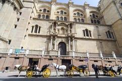 Horse cars, Malaga Royalty Free Stock Photo