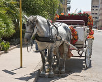 Horse and Cart Stock Photo