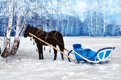 Horse with a cart Stock Images