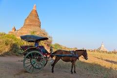 Horse cart in Bagan, Myanmar Royalty Free Stock Image