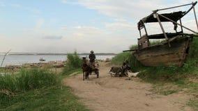 Horse cart , bamboo, cambodia stock footage