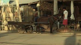 Horse cart , cambodia stock footage