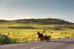Horse cart carrying hay harvest, in Sibiu County, Transylvania Royalty Free Stock Photo