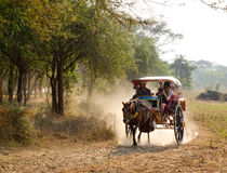The horse cart carrying passengers on rural road in Bagan, Myanmar royalty free stock photos