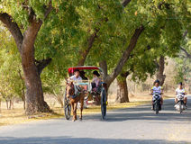 Horse cart carrying tourists on the rural road in Bagan, Myanmar Royalty Free Stock Images