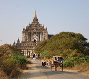 Horse cart carrying tourists to the temple in Bagan, Myanmar Royalty Free Stock Photos
