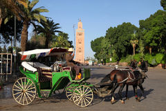 Horse cart in Djemaa El Fna square in Marrakesh. With the view of minaret of the Koutoubia Mosque in the Marrakesh royalty free stock photo
