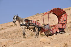 Horse cart Royalty Free Stock Photography