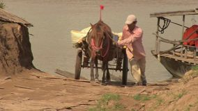 Horse cart, ferry boat, cambodia, southeast asia stock video footage