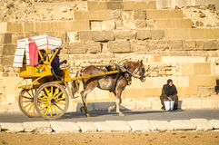 Horse cart in Giza, Egypt. Giza, Egypt - November 19, 2011: People in a horse cart ride past a woman selling water to tourists at the Great Pyramids Site in Giza stock photography