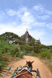 Horse cart going to temple in Bagan Stock Image