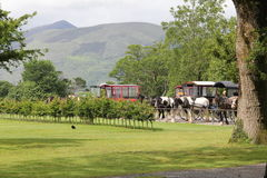 Horse and cart, jaunting cars. At Killarney Park Ireland Stock Images