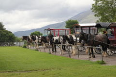 Horse and cart, jaunting cars Stock Image