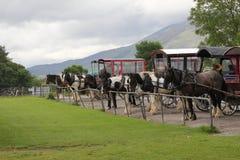 Horse and cart, jaunting cars. At Killarney Park Ireland Stock Image