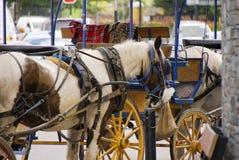 A Horse and Cart Stock Photos