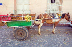 Horse Cart in the old town, Trinidad, Cuba Stock Image