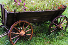 Horse cart - pot of flowers Royalty Free Stock Images