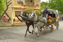 Horse cart Princes island Royalty Free Stock Photo