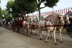 The horse cart ride at the Seville fair, Andalusia Spain. This is the traditional method of transport in European cities before the arrival of the car Royalty Free Stock Images