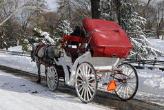Horse Cart Riding. In Central Park in Winter Time, New York City Royalty Free Stock Photo