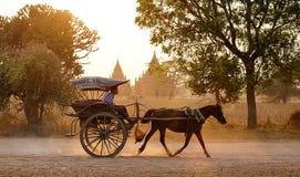 Horse cart run on rural road at the sunset in Bagan, Myanmar Royalty Free Stock Images