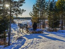 Horse cart running on snow road royalty free stock images