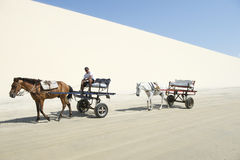 Horse and Cart Sand Dune Jericoacoara Brazil Royalty Free Stock Photo