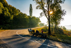 Horse cart on serpentine in countryside area. Volovets, Ukraine - SEP 30, 2016: horse cart moving on serpentine in countryside area. bright autumnal sunrise in Stock Photography