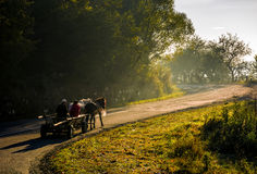 Horse cart on serpentine on foggy morning. Volovets, Ukraine - SEP 30, 2016: gypsy family ride a horse cart uphill the serpentine in countryside area. bright Royalty Free Stock Image
