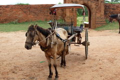 Horse cart with small wagon in old Bagan, Myanmar Stock Photography