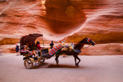 Horse and cart speeding through the Siq Royalty Free Stock Image