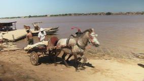 Horse cart , transport , mekong, cambodia, southeast asia. Southeast asia,  Cambodia, mekong,  Koh pene island  , december 2013.  Men  pushing  horse cart stock video