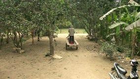 Horse cart , transportation, cambodia, southeast asia stock footage