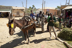 Horse and cart transportation, Ethiopia Stock Images