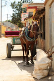 Horse and cart in Trinidad, Cuba Stock Image
