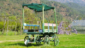 Horse cart wagon in village stock video