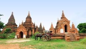 Horse cart waiting at Old Bagan in Myanmar Stock Photo
