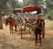 Horse cart waiting for tourists at Mingun town in Mandalay, Myanmar Stock Images