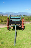 Horse cart in the winelands on a sunny day Royalty Free Stock Photos