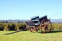 Horse cart in the winelands on a sunny day Royalty Free Stock Image