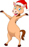 Horse cartoon with christmas hat. Illustration of Horse cartoon with christmas hat Stock Photo