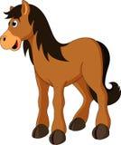 Horse cartoon. A stallion cute and adorable Stock Photo