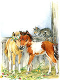 Horse and and cat. background with flower. illustration  Stock Images