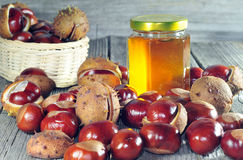 Horse Chestnut And Honey On A Wooden Table Royalty Free Stock Images