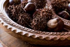 Horse Chestnuts in wooden basket. Organic Food Royalty Free Stock Image