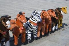 The horse. Children ride recreational activities Stock Photos