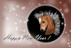 Horse on christmas card. Royalty Free Stock Images