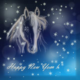 Horse on christmas card. Royalty Free Stock Photography